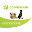 Dogmopolite Kutyapanzió és Napközi - Pest