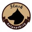 Flash Kutyapékség - Páva utca