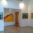 Erlin Klub Galéria