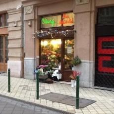 Jutka Virág - Ráday utca (Forrás: nelso.com)