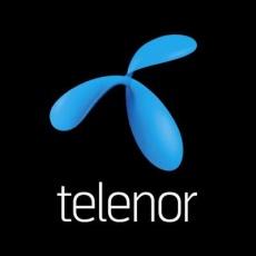 Telenor - Lurdy Ház