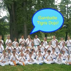 Tigris Harcművészeti Iskola